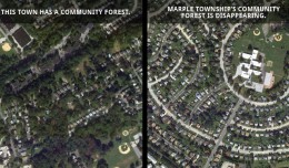 The impact of a community forest. Imagery provided by Google Earth.
